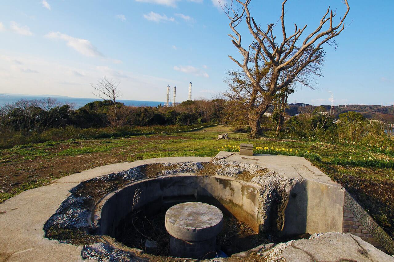 「ファーマシーガーデン浦賀」の画像検索結果